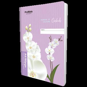 ProMate CR Book Single Ruled 80Pgs